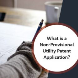 What is a Non-Provisional Utility Patent Application